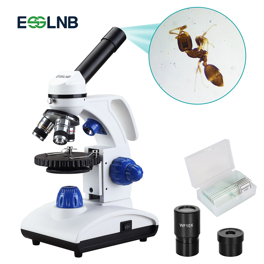 Professional Biological Microscope 40X-1000X With Coaxial Coarse And Fine Adjustment Top/Bottom LED For Lab Slides Watching