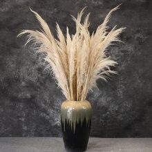 5PCS/80-110cm Pampas Gras Natürliche Reed Hochzeit Getrocknete Blume Große Zeremonie Dekoration Moderne Dekoration flores Preservadas