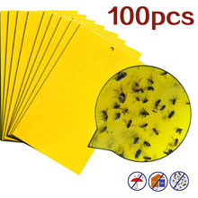 100 pièces forte mouches pièges insectes collant conseil attraper puceron insectes tueur antiparasitaire Whitefly Thrip colles autocollant de colle(China)