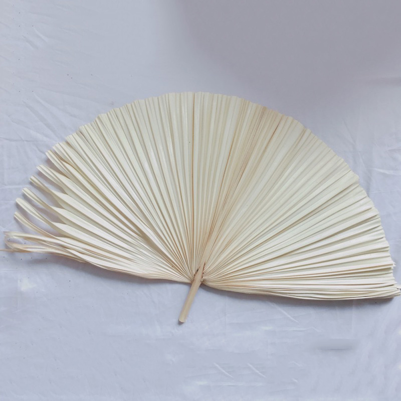 Natural Dried Sunflower Leaves Palm Leaf For DIY Wedding Decoration Florist Flower Arrangement Art Materials