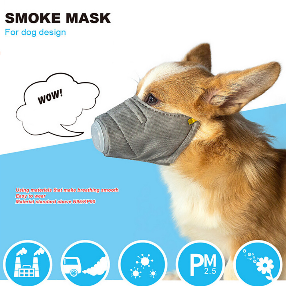3Pcs Mascarillas Dog Soft Cotton Mouth Mask Pet Respiratory PM2.5 Filter Anti Dust Masks Masque Cosplay Costume Accessories F814(China)
