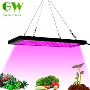 Image 1 - Lampe horticole de croissance AC85 265V LED à spectre complet avec 2835 puces, rouge, bleu + IR + UV, pour culture de plantes, fleurs, semis