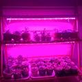 Светодиодный светильник Fitolamp полного спектра для выращивания растений, 50 Вт, светодиодный светильник для выращивания семян растений, комна...