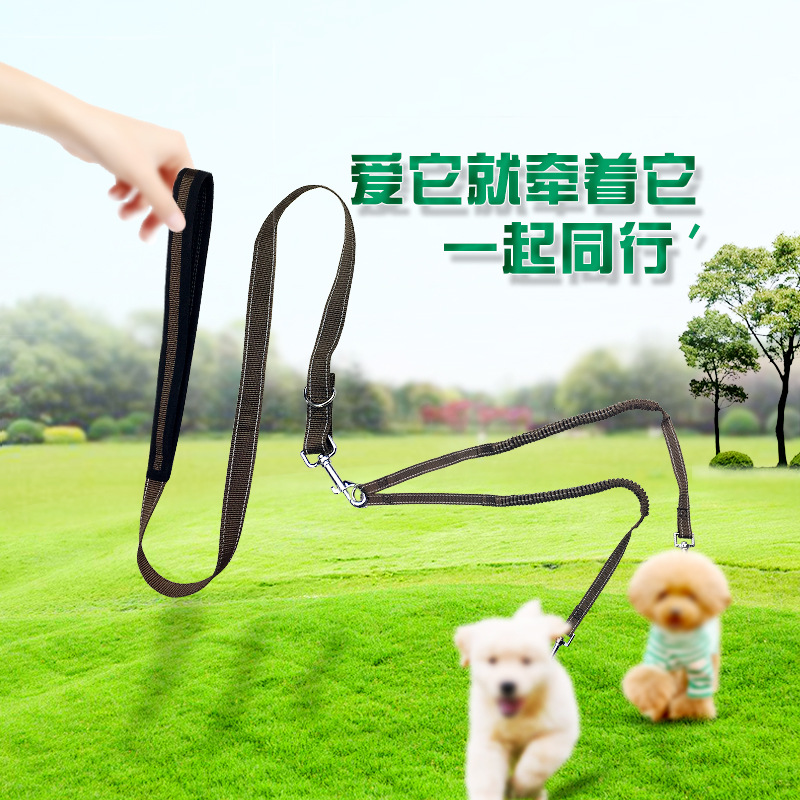 Pet Supplies Dog Elasticity Elastic Double Traction Belt Pet Multi-functional Extendable Hand Holding Rope Distraction Double Tr