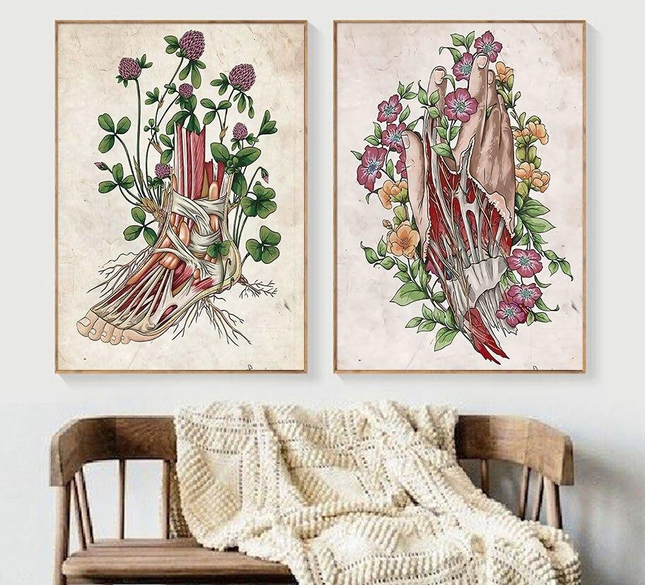 Anatomi kas çiçek bağbozumu posteri duvar sanatı tuval yağlıboya İskandinav posterler ve baskılar duvar resimleri için doktor ofis dekor