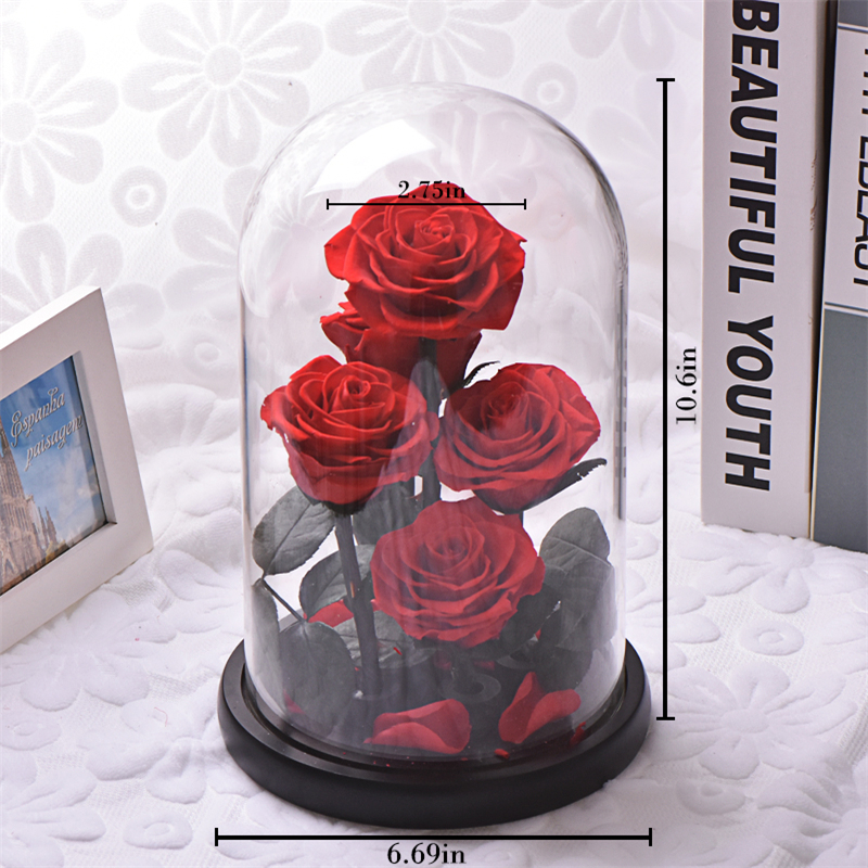 Image 2 - New Arrival Eternal Preserved Rose with Glass Dome 5 Flower Heads Rose Forever Love Wedding Favor Party Gifts for WomenArtificial & Dried Flowers   -