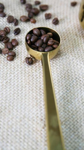 Di alta qualità di Rame In Acciaio Inox Cucchiaio di Caffè Oro Con Clip Del Sacchetto di Caffè Scoop