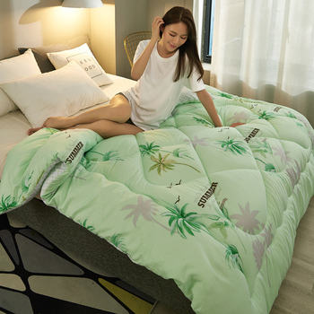 High Quality Thicken Warm Winter Comforter Hot Sales Very Warm Bed Duvet Cheap And Comfortable Quilt Ab Side Patchwork Comforter