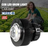 Phlizon 100 watt cob full spectrum led wachsen licht pflanzenlampe anlage led lampe samen gemüse blume lampe-in LED-Wachstumslichter aus Licht & Beleuchtung bei