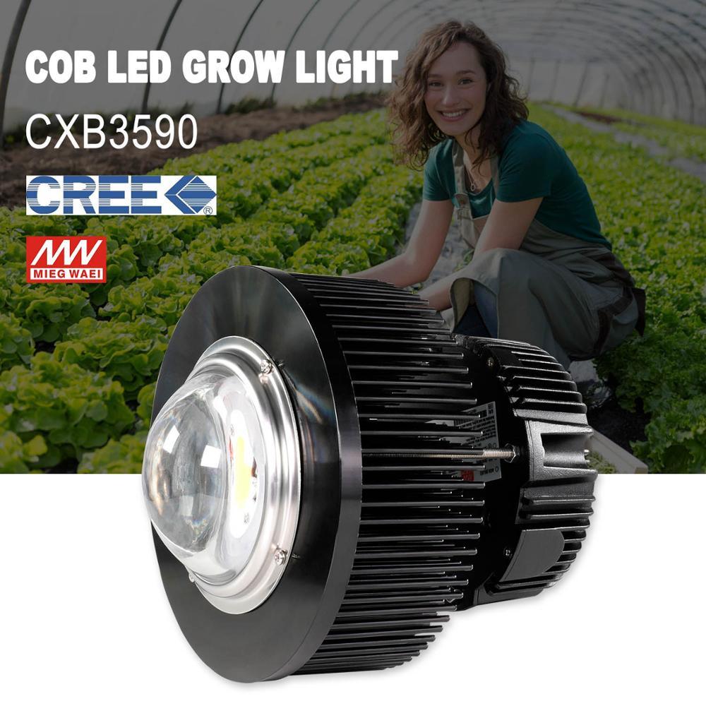 Phlizon 100 Watt Grow Led Light Cob Full Spectrum Plant Led Lamp Seeds Vegetables Flower Lamp