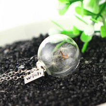 2019 Fashion Dried Flower Dandelion Pendant Necklace for Women Silver Color Glass Vial Floating Necklaces Jewelry