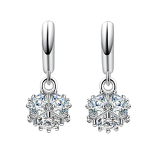 Korean version of the new temperament fashion wild zircon long paragraph female models 925 sterling silver ear rings YE035(China)