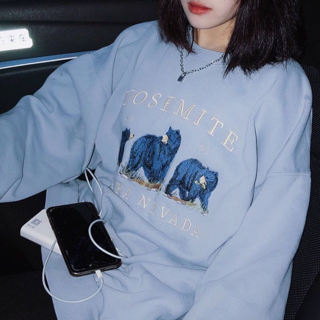 Vintage Bear Embroidery Sweatshirts Hoodies Women Harajuku Streetwear Casual Long Sleeve Crewneck Oversized Fashion Hoodie Woman 3