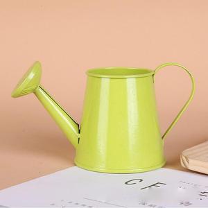 Mini Flower Pot Bonsai Waterin