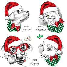 ZhuoAng Christmas puppy and cat Clear Stamps For DIY Scrapbooking/Card Making Decorative Silicon Stamp Crafts