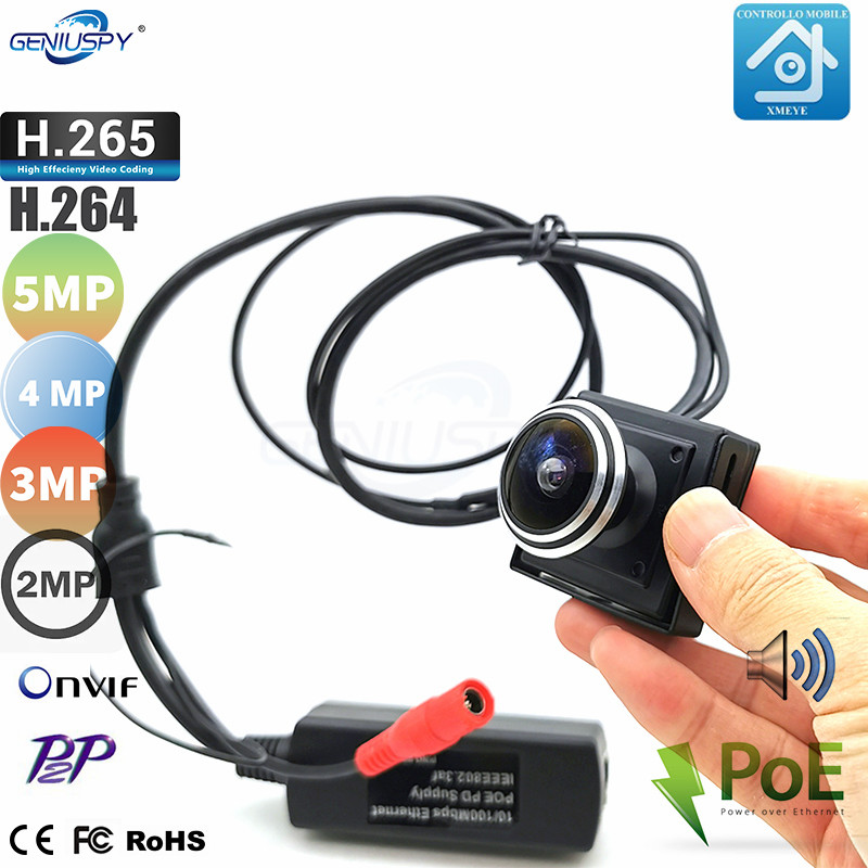 HD 2MP 1080P IP Network H.264 Onvif Mini Fish Eye Lens Wide Angle Camera POE P2P