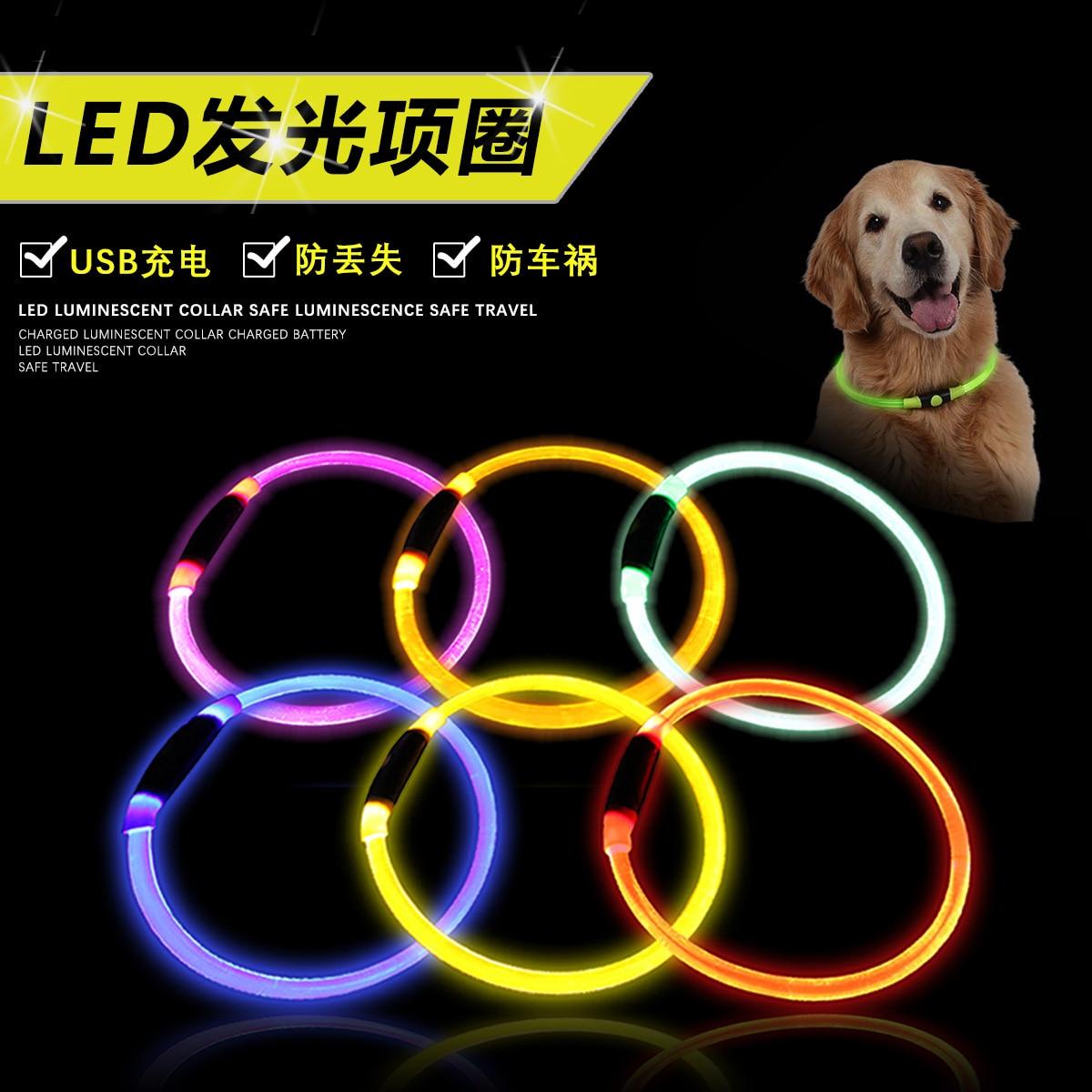 Quintana Luminous Collar Tou Ming Pu Pet Dog Collar Brightness Good Overall Shining Effect Items