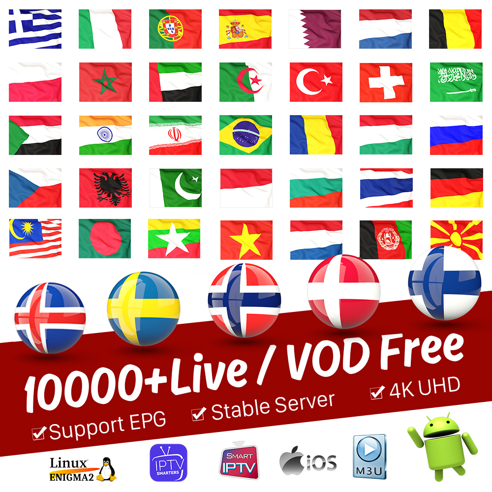 IPTV Subscription Portugal Spain Dutch IPTV Arabic Germany Finland Sweden Norway French IPTV M3U Italia Belgium Greek IP TV