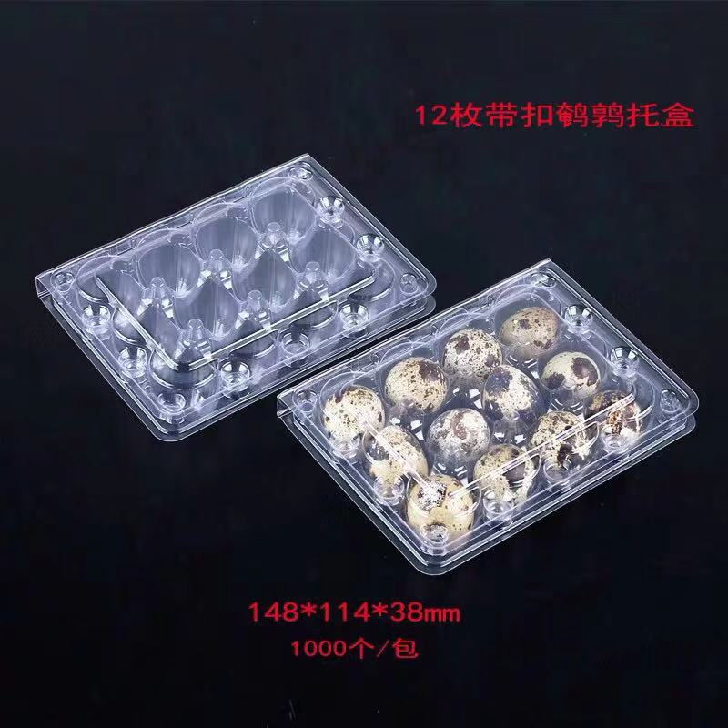 100 PCS Quail Egg Cartons  Bulk Cheap Blank Egg Cartons 12-count Egg Plastic Box