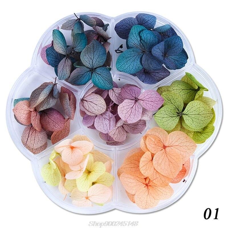 45-50 шт./кор. засушенные цветы DIY Эпоксидной смолы ручной работы, заполнение материалов