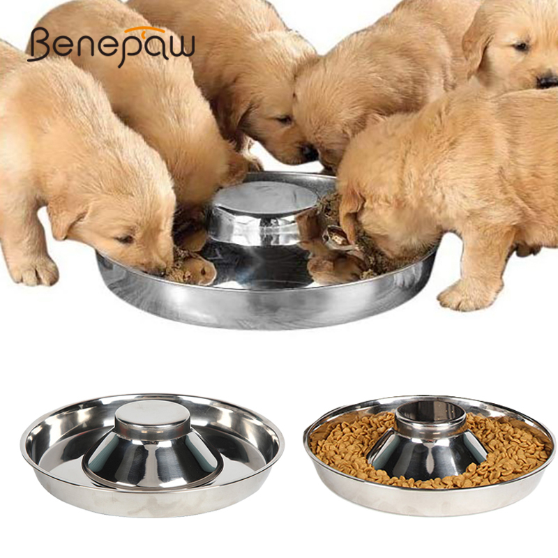 Benepaw Stainless Steel Dog Bowl Multiple Safe Puppy Feeding Durable Water Food Pet Bowl For Small Medium Large Dogs Easy Clean