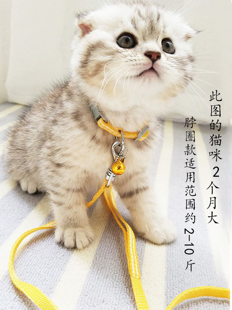 Chinlon Break Free Lanyard Kittens Canine Thoracic Cat Collar Suppository Cat Lanyard Anti-Traction Dogs And Cats Universal Walk