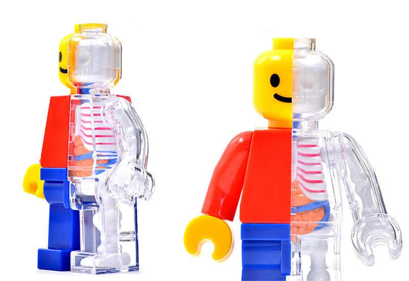 4d ludzka przezroczysta perspektywa anatomiczny szkielet kości Model Puzzle zmontowane zabawki medyczne