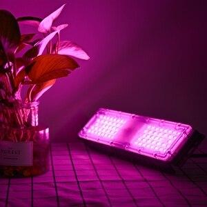 Image 3 - Warmhouse LED lampa do roślin Full Spectrum 220V 60W SMD2835 Chip Phyto Light do sadzenia roślin kwiatowych lampa do uprawy roślin z zestaw do zawieszenia