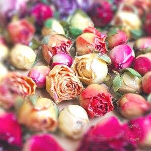 8 шт., подвески для сережек и браслетов, натуральные настоящие сохнущие цветы, подвески с покрытием из жидкой смолы, Подвески для изготовлени...