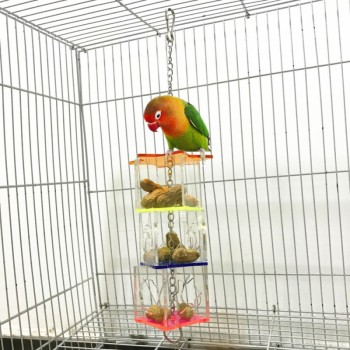 3 Layer Parrot Hanging Chewing Feeding Toy Bird Feeding Transparent Food Feeder Holder Star Shaped Box Cage Toy Bird Accessories