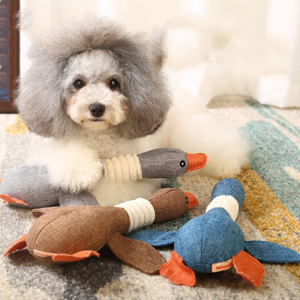 Dog squeeky duck
