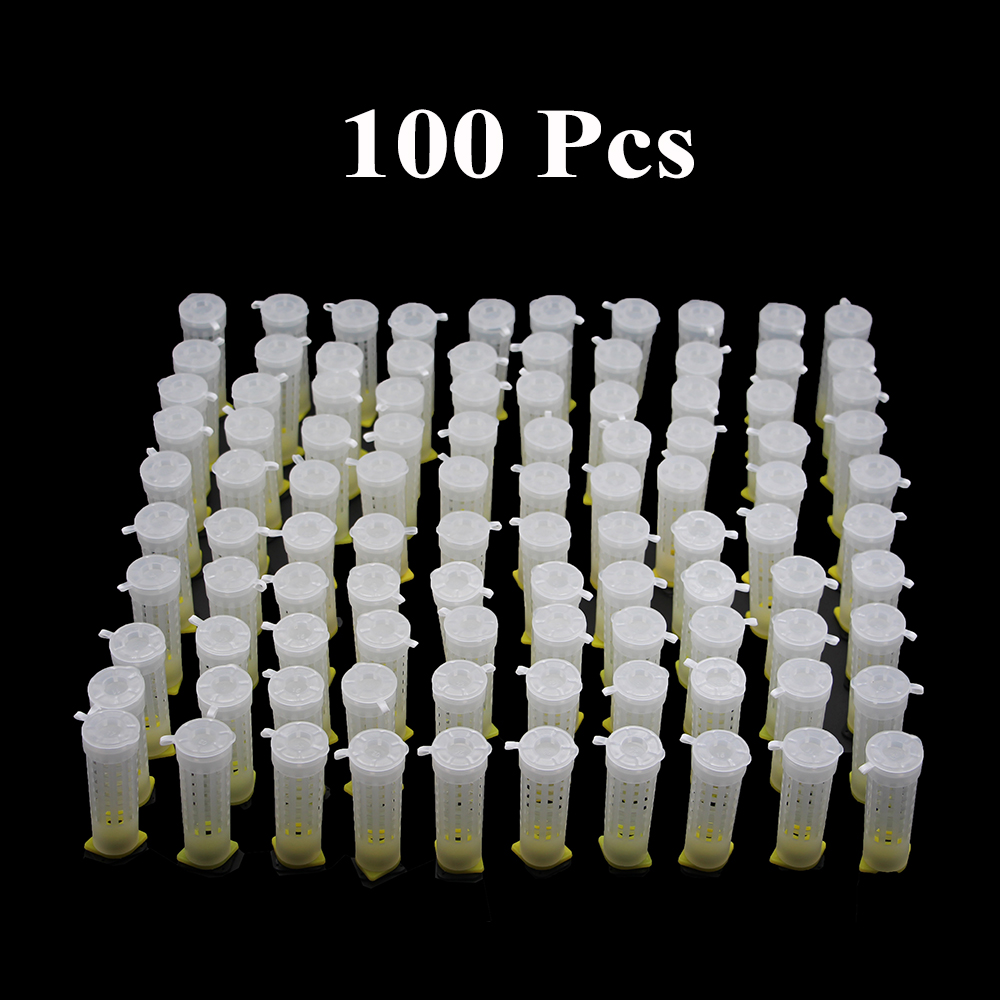 100PCS Beekeeping Queen Rearing System Cage Cup Box Cages Bee Tools Protection Cover Cell Catcher Plastic Supplies Wholesale