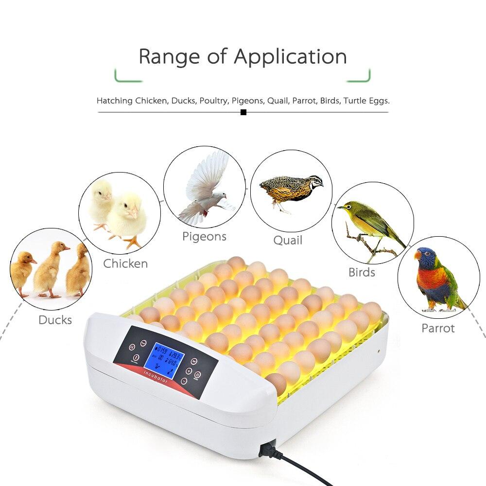 56 яиц все в одном интеллектуальный полностью автоматический инкубатор яйцо инкубационная машина для утиных голубей перепелиных попугаев птицы яйца