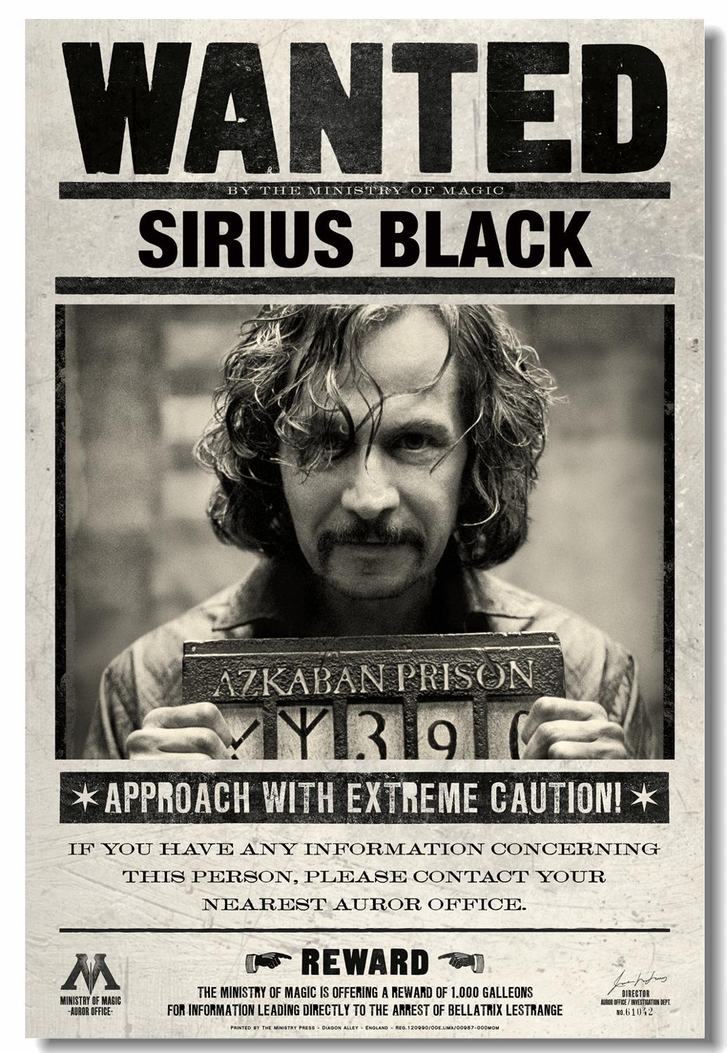 Custom Printing Canvas Wall Decoration HP3 Wanted Sirius Black Poster David Thewlis Sticker Prisoner Of Azkaban Wallpaper #0633#