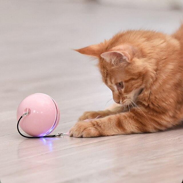 Fluorescent Butterfly Kitten Toys Non Stop Fun!  4
