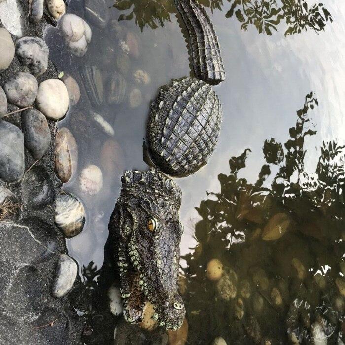 3 шт./компл. искусственный высокое качество плавающая смолы крокодилов для пруд для садовых прудов украшения THIN889