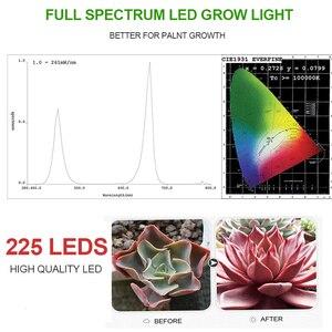 Image 5 - 3 adet ışık büyümeye yol açtı 1000W lamba büyümek tam spektrum Phyto lamba Fitolampy kapalı otlar sera için ışık led büyümek çadır kutusu