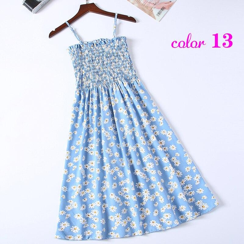 13-天蓝色小雏菊