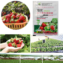 Rapid Rooting Strawberry Fertilizer Supplemental Plant Nutrition Expanded Fruit