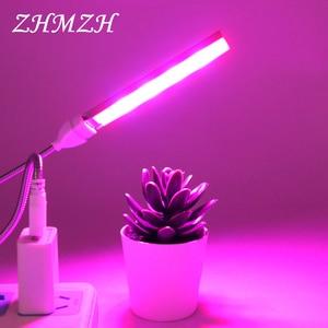 DC5V LED Plant Growing Lamp US