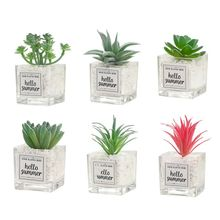 Artificial Mini Succulent Plant Glass Potted Bonsai Fake Pineapple Home Office Bookstore Decor