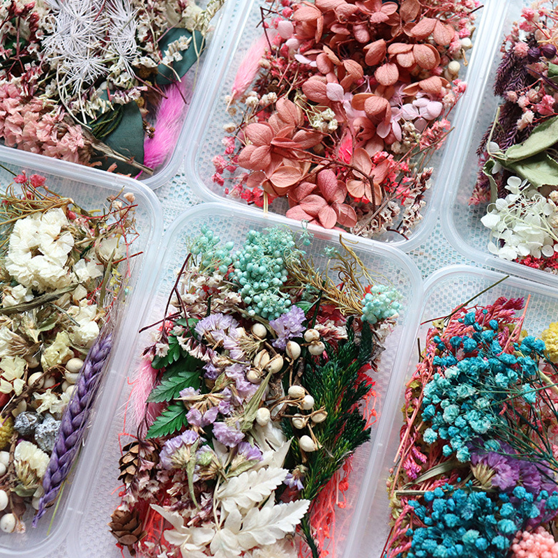 1 Box Real Dried Flower Dry Plants For Aromatherapy Candle Epoxy Resin Pendant Jewelry Soap Making Craft DIY Accessories