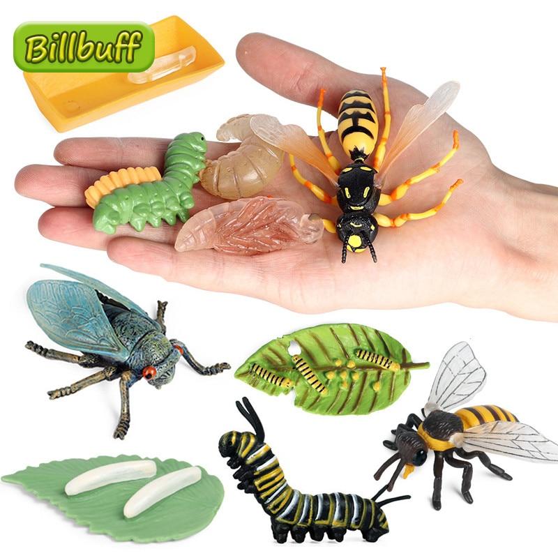 2021 simülasyon hayvan büyüme Model döngüsü ABS Wasp kelebek arı figürleri koleksiyonu biliş eğitim oyuncaklar çocuklar için hediye