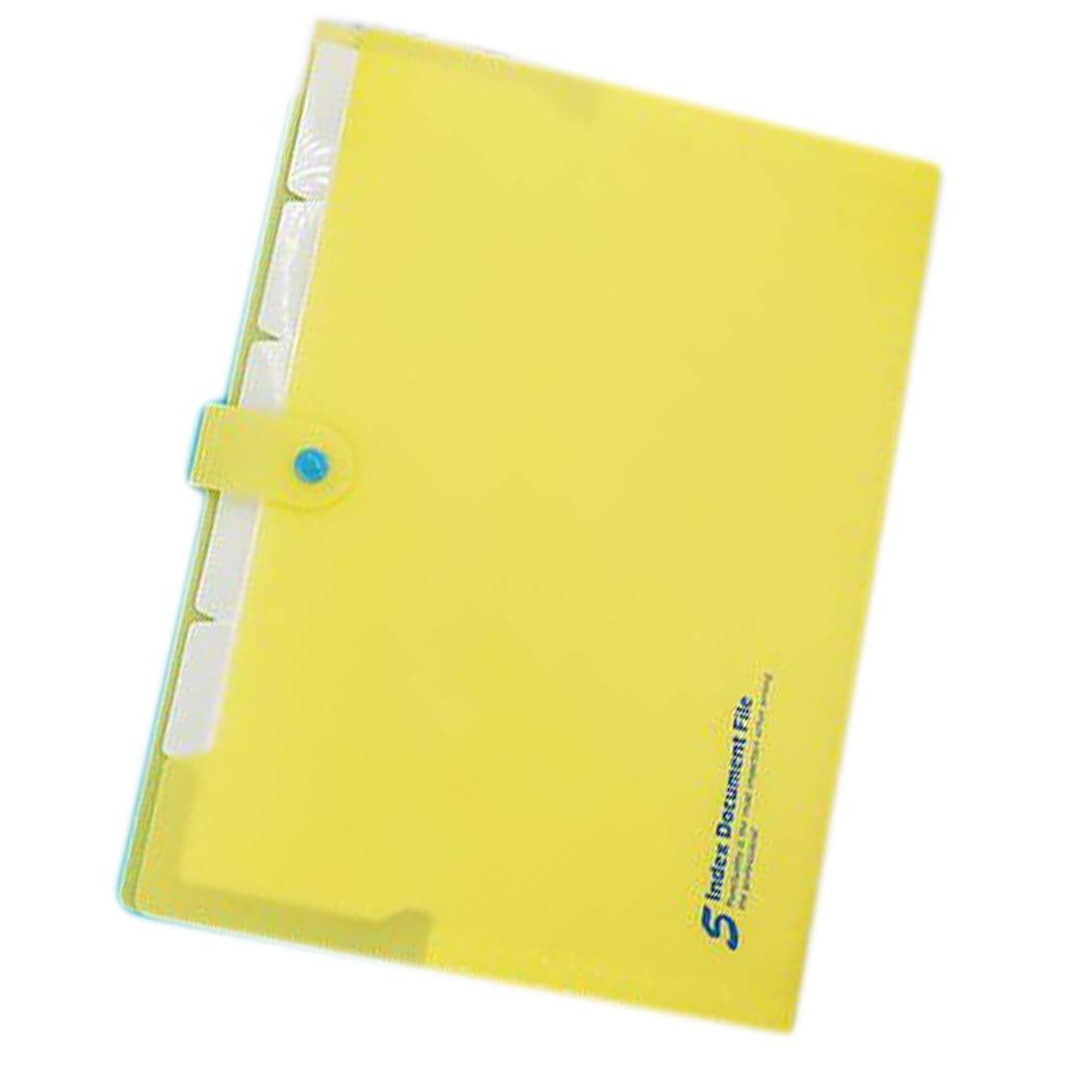 Expanding File Folders Paper Organizer Document Snap Closure A4 Holder 5 Pockets For School Office Solid