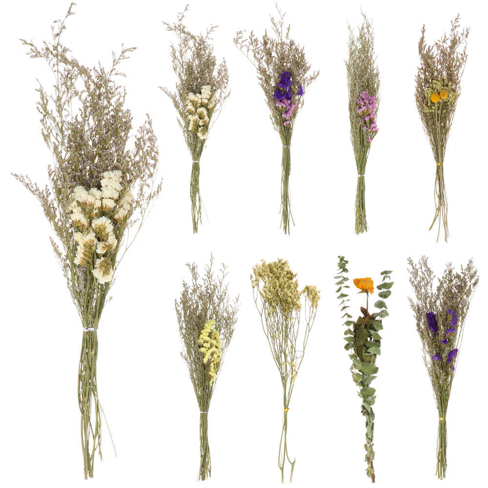 Limonium Daisy Bouquet Grasses Stems Natural Dried Flowers Real Plant Leaves