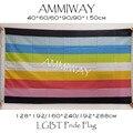 AMMIWAY любой размер Queer гордыня Радуга флаг высокое качество 100D полиэстер Queer ЛГБТ пользовательские одиночные или двухсторонние флаги и банне...