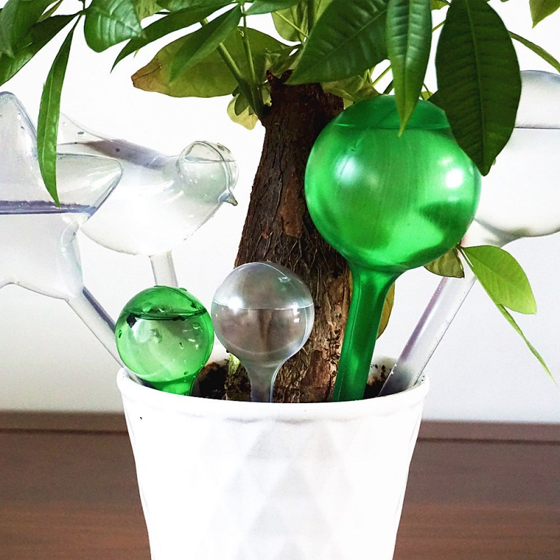 plant self watering bulb shape waterer globes automatic irrigation planter SP