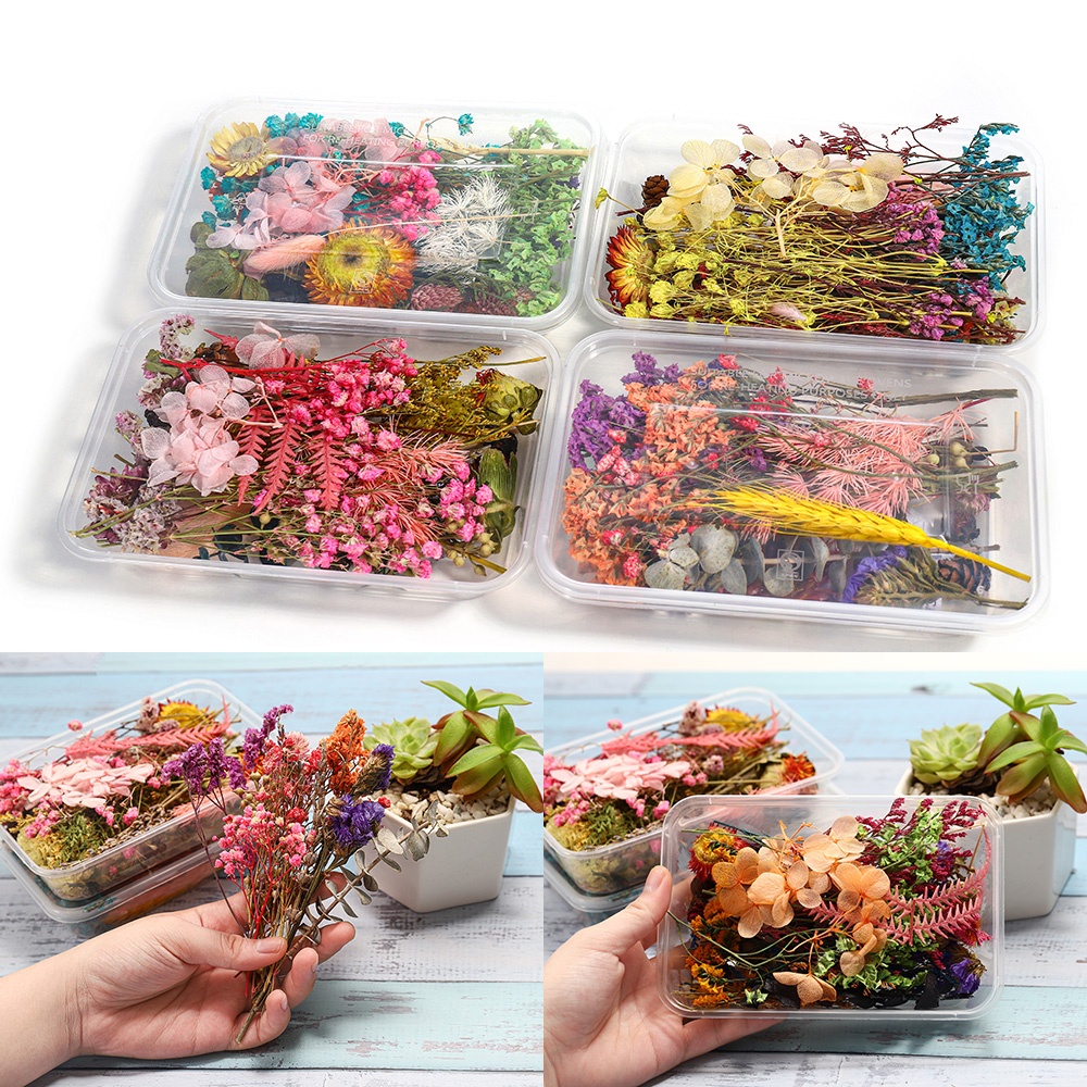1 Box Random Real Dried Flower Resin Mold Fillings UV Expoxy Flower For Epoxy Resin Molds Jewelry Making Craft DIY Accessories 1