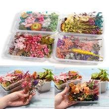 1 kutu rastgele gerçek kurutulmuş çiçek reçine kalıp dolgu UV epoksi çiçek epoksi reçine kalıpları takı yapımı el sanatları DIY aksesuarları