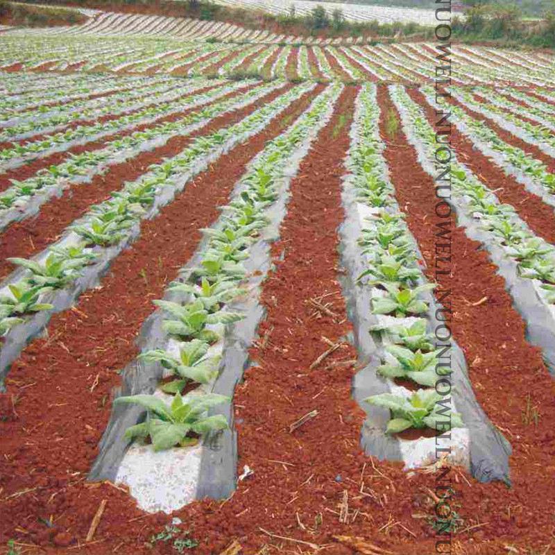 5 м белая и черная сельскохозяйственная садовая пленка растительная посадка Пластик пленка для мульчирование растений борьба с вредителям...